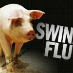 راه های جلوگیری از ابتلا به انفولانزای خوکی/سلامت