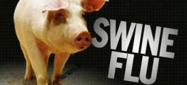 انفولانزای خوکی