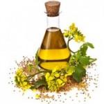 خواص دارویی روغن گیاهی کانولا/گیاهان دارویی