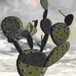 کاشت  کاکتوس راکتی یا زبان خارسو یا زبان مادر شوهر/پرورش گیاه