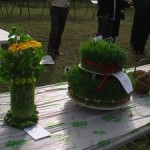 کاشت سبزه به شکل جا شمعی یا گلدون/ سفره هفت سین