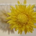 اموزش گل کوکب با خمیر گل چینی/آموزش گلسازی