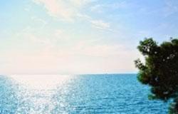 آشنایی با بیماری های پوستی دریا/سلامت