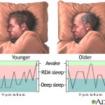 خواب، نیازی حیاتی/روانشناسی