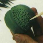 آموزش ساخت خمیر کاکتوس/آموزش گل سازی