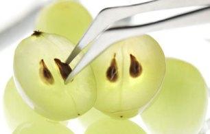 این میوه را با هسته بخورید/سلامت