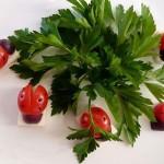 آموزش   تزئین گوجه فرنگی به شکل کفشدوزک /سفر آرایی