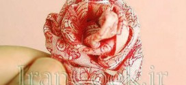 ribbon-roses