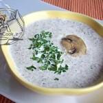 طرزتهیه سوپ قارچ خامه ای/آشپزی