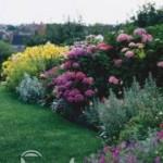 باغبانی در تابستان/پرورش گیاه